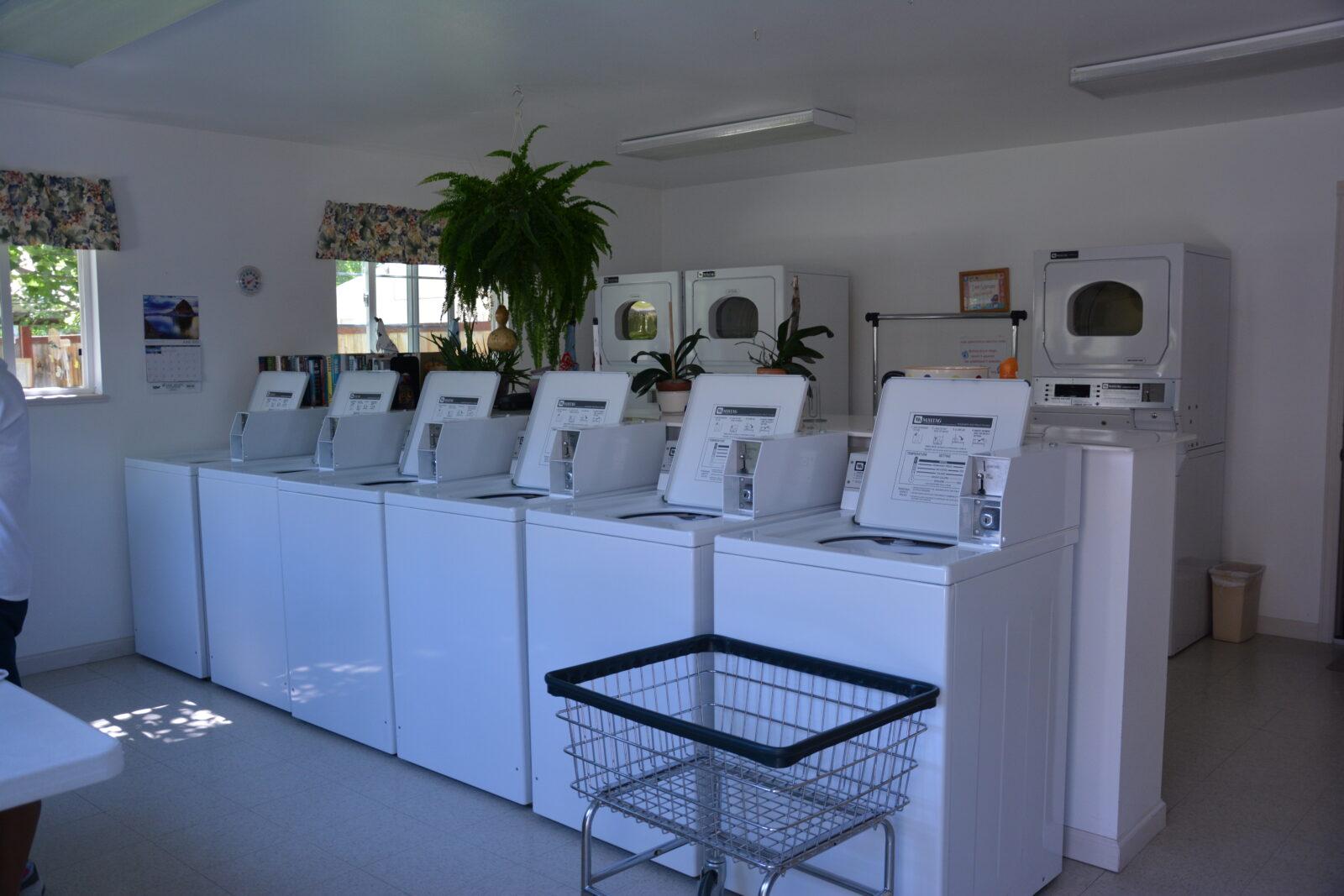 CLEAN laundry & baths