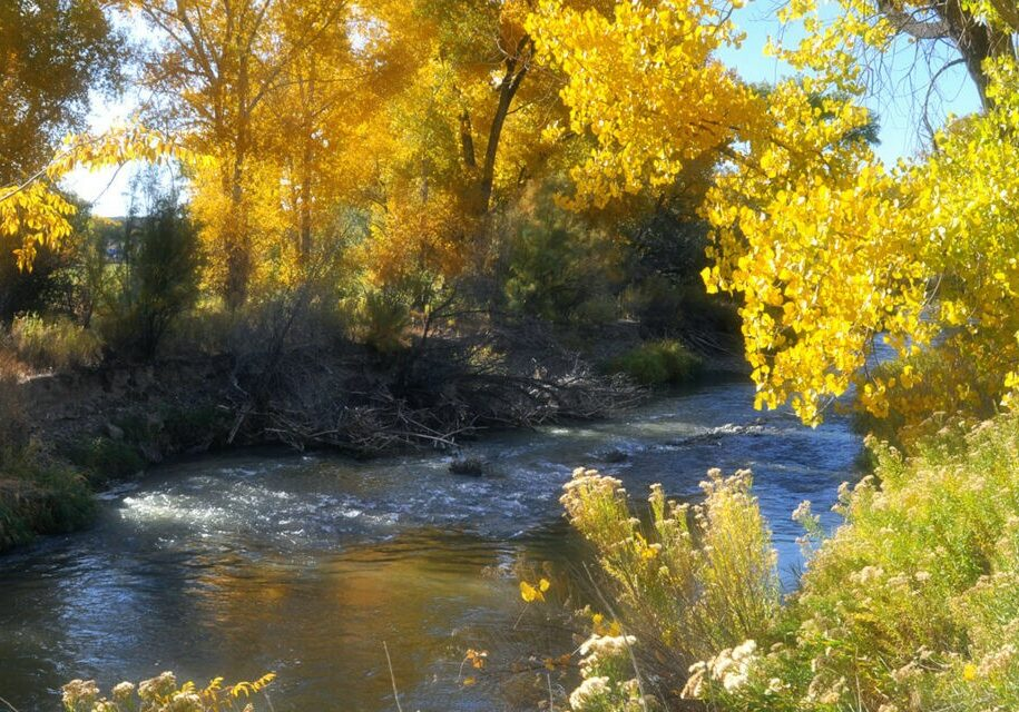 Fall-Colors-along-River