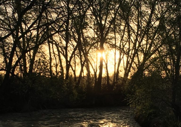 Riverside Sunsets
